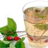 Травяной чай из клевера и земляники»>